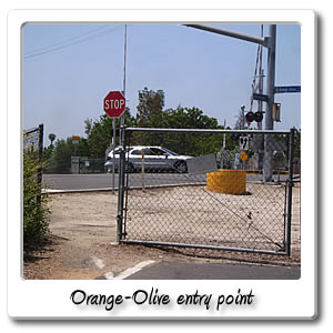 orange olive entry point